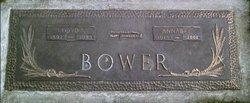 Lloyd Ivan Bower