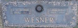 Howard Haskell Wesner