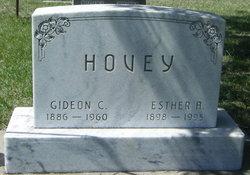 Gideon C. Hovey