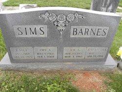 Joe G Barnes