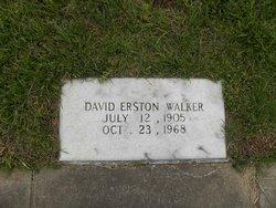 David E Walker