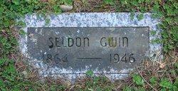 Seldon Gwin