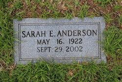 Sarah E Anderson