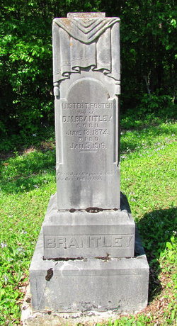 Luster Tennessee <i>Foster</i> Brantley
