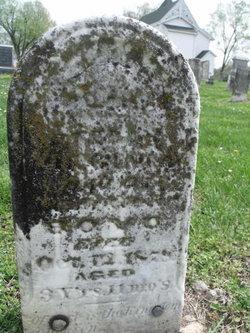 Stella Virginia Boyd