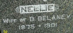 Nellie <i>Coin</i> Delaney