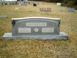 Joe Lovell Anderson