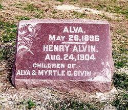 Henry Alvin Bivin