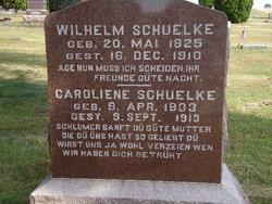 Caroliene <i>Mandei</i> Schuelke