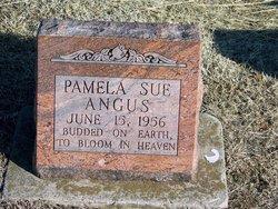 Pamela Sue Angus