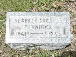 Albert Grotius Giddings