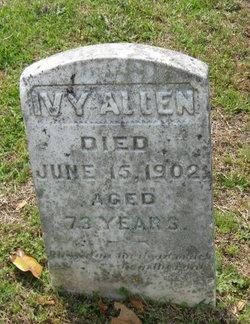 Ivy Allen