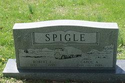 Carol A Spigle