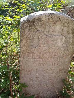 William Lewis Bryan, Jr