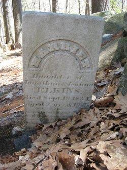 Harriet Elkins