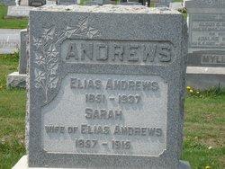 Sarah L Swank <i>Daily</i> Andrews