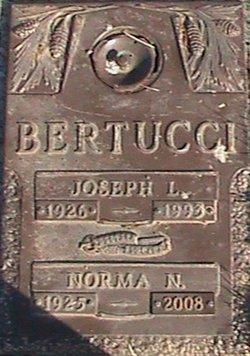 Joseph Louis Bertucci