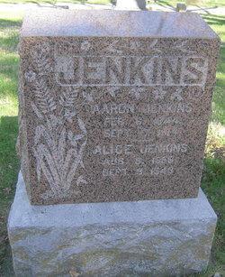 Alice <i>Coon</i> Jenkins