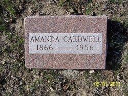 Amanda E Cardwell