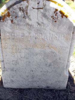 Leone A. Fransioli