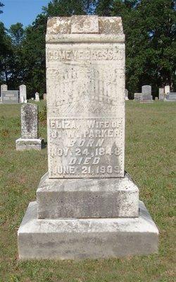 Elizabeth Ann Eliza <i>Cooper</i> Parker