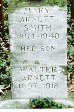 Walter Arnett