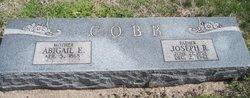 Abigail Emma <i>Jessup</i> Cobb