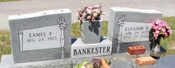 Eamel F Bankester