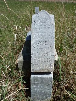Timmie A. Fallin