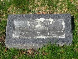 Robert James Delaney