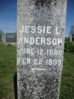 Jessie L. Anderson