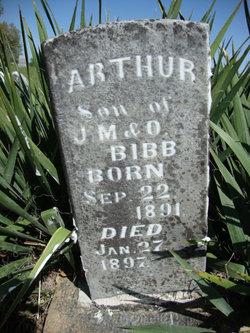 Arthur Bibb