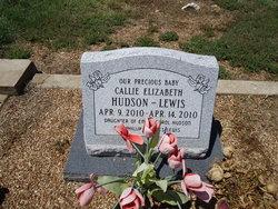 Callie Elizabeth <i>Hudson</i> Lewis