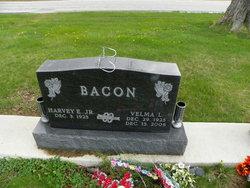 Velma L <i>Hart</i> Bacon