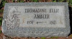 Thomasine Ellie Ambler