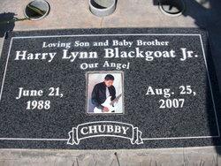 Harry Lynn Blackgoat, Jr