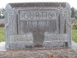 Robert Bruce Curtis
