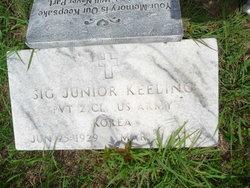 Sig J Keeling