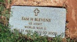 Sam Henry Blevins