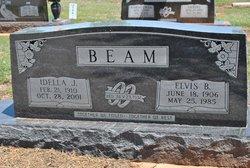 Elvis B Beam