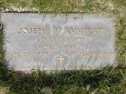 Joseph F Ammirati