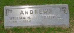 William Henry Andrews