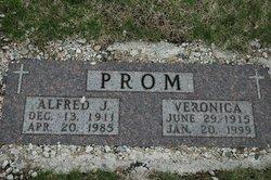 Alfred J. Prom