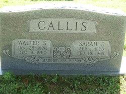 Sarah Emily <i>Wilkerson</i> Callis