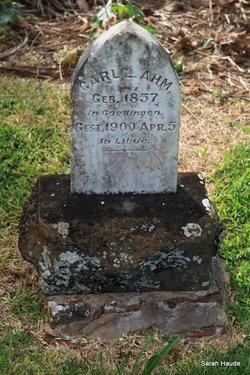 Carl Louis Ahm