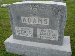 Nettie A Adams