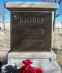 David Juan Bigbee