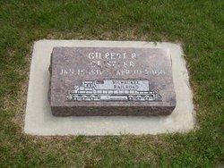 Gilbert B Geiszler