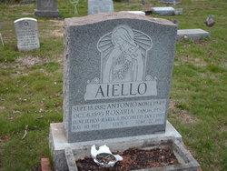 Lucy F Aiello