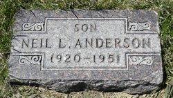 Neil L Anderson